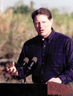 Photo of Vice President Al Gore